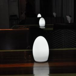 china Battery Powered Outdoor Art Decor Table Lamp with Remote Control TML-G01E manufacturer