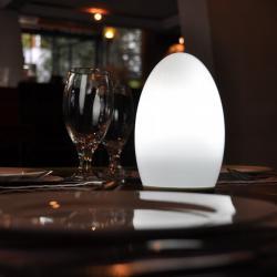 Cina Energy Saving moderna a LED senza fili Lampade per tabelle TML - G01E produttore