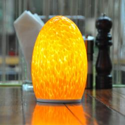 china Stylish Rechargeable Decorative Cordless Lamps for Office TML-G01E manufacturer