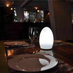 china LED Candle Table Lamp Lithium Batteries for Occasional Tables TML-G01E supplier