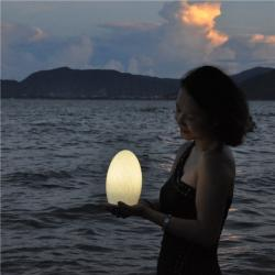 china Cordless Reading Decoration Lamp for Romantic Dating TML-G01E manufacturer