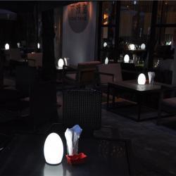 china 3000mah sans fil rechargeable Lampe de table avec gradateur d'éclairage souple TML- G01E fournisseur