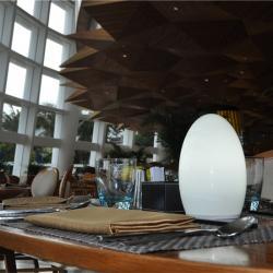 china Wi- Fi Controle Restaurante Contemporâneo Abajur com Energy Saving TML - G01E fornecedor