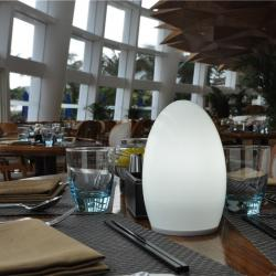 china Egg Shape Dimmable Wireless LED Lights with Remote TML-G01E manufacturer