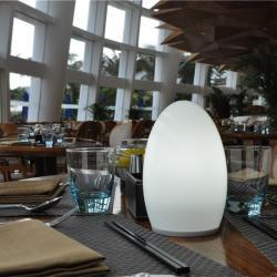 Cina Outdoor Lampada portatile cordless Notte Decorazione Lampade per Bar TML - G01E fornitore