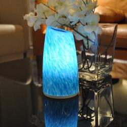 china House Decoration Blue Orange Cordless Desk Lamps 2-5 hours Charge Time with High Brightness TML-G01T manufacturer