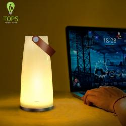 Hand-held Color Changing Battery LED Lamp