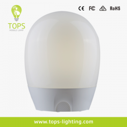 china IP54 Skillfully Processed Decorative Cordless Table Lamp manufacturer