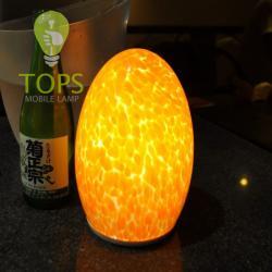 china Sans fil LED Lampe de table rechargeable mobile constructeur