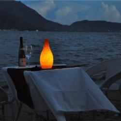 china Tops Lighting Eco-friendly price affordable Bottle Shape LED Mobile Lamp manufacturer