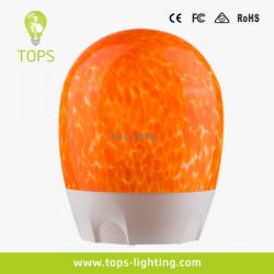 china Beleza delicada e Arte Rechargeable Cordless LED Luz do fabricante