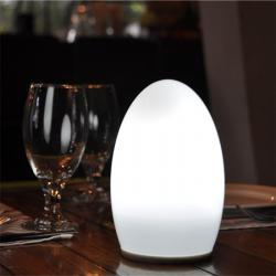 china Tops Lighting China Manufactured price affordable Wireless LED table Lamp manufacturer