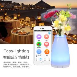china 2016 new product  Smart control decorative LED eco-friendly mobile vase lamp manufacturer