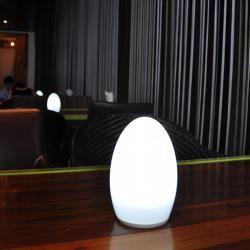 china 12V 50hrs lange Kerze Flammenform LED-Lampe, LED-Kerzelicht 1,5 W , batteriebetriebene Kerzenlicht manufacturer