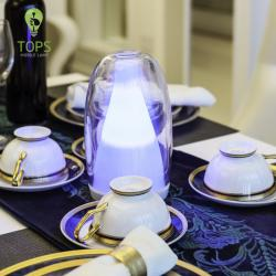 china Art and Technology Hot Selling LED Restaurant Table Lamp manufacturer