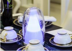 china Fashion stylish rechargeable decorative romantic Jellyfish LED Portable Lamp constructeur