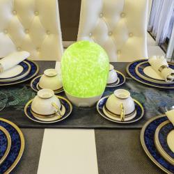 china Hotel Egg Shape Cordless LED Lights Outdoor with Energy Saving TML-G01P manufacturer