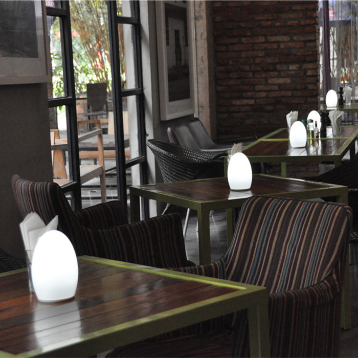 china IP54 Cordless LED Desk Lamp for Coffee Shop TML-G01E supplier