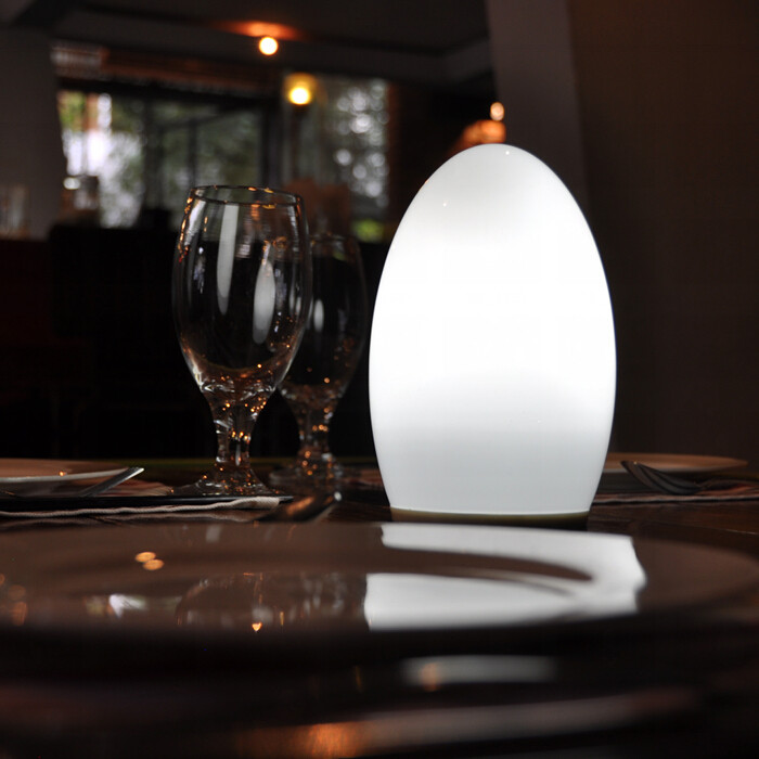 china Energy Saving Modern LED Cordless Lamps for Tables TML-G01E supplier