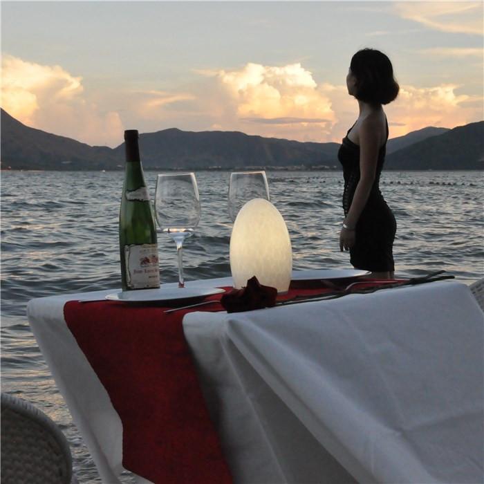 china Classic Italian Table Lamps Flexible Cordless Lighting for Beach TML-G01E supplier