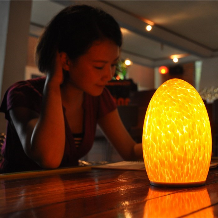 china Battery Operated Desk Lamp Cordless Lighting for Home Decoration TML-G01E supplier