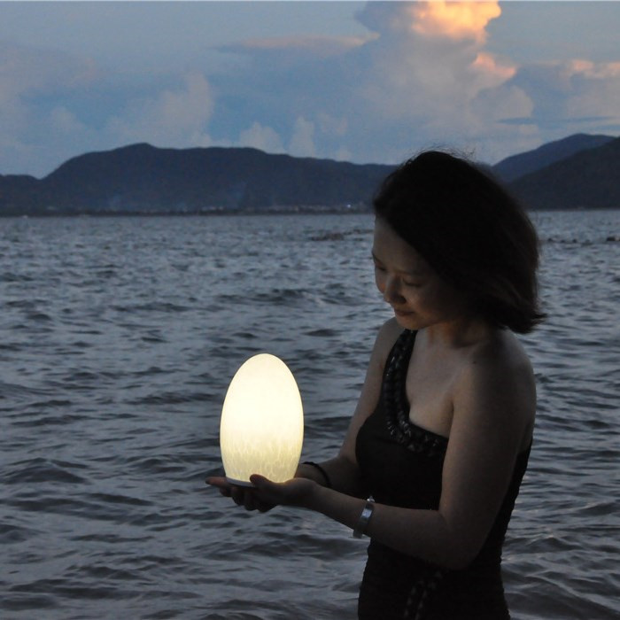 china Eco-friendly Cordless LED Christmas Lights with Long Lifespan TML-G01E supplier
