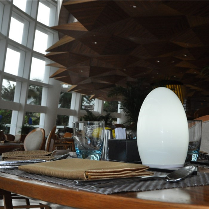 china Wi-Fi Control Restaurant Contemporary Table Lamp with Energy Saving TML-G01E supplier