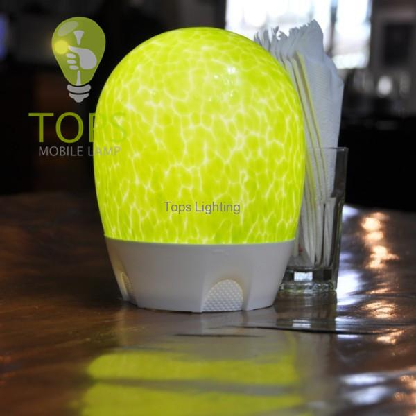 china Environment Friendly Art and Technology Hotel LED Lamp supplier
