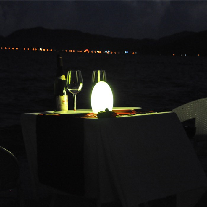china Beach Restaurant Cordless Rechargeable LED Lamp with High Brightness TML-G01E supplier