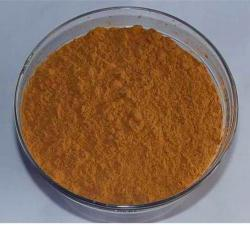 Lotus Leaf Plant Extract Powder 5% Nuciferine Brown Fine Extract Used to Promote Fat Decomposition