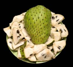 Cina GMO Free Natural Soursop Leaf Extract Powder Anona Muricata L without Additive Used in Curing Cancer produttore