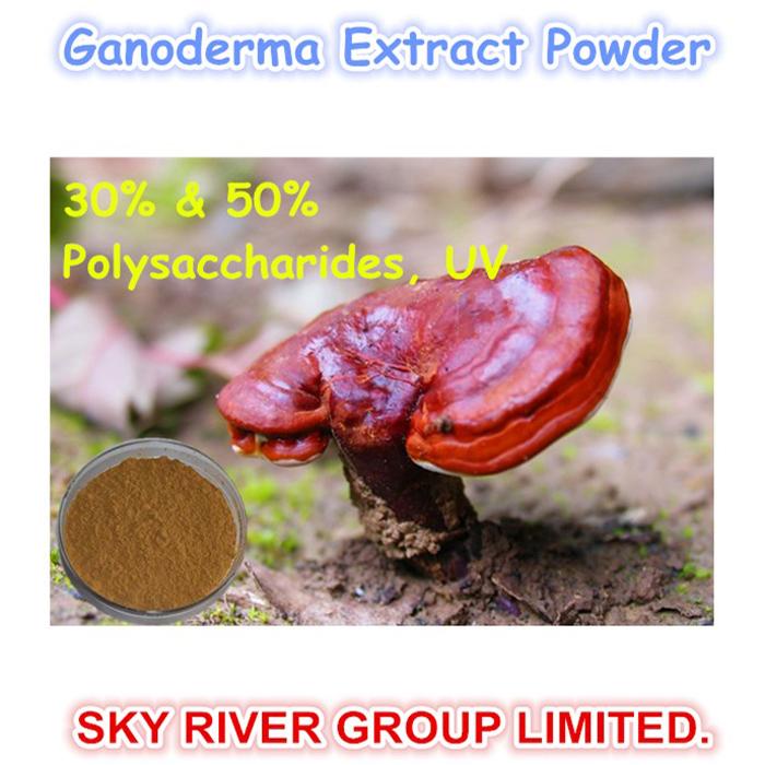 中国·植物原料、有機霊芝胞子粉ハーブ製品( 50%多糖類30% &#038 )を抽出します·サプライヤー